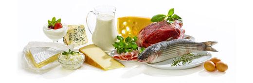 Osteoporosis dr rogelio santos - Alimentos para la osteoporosis ...